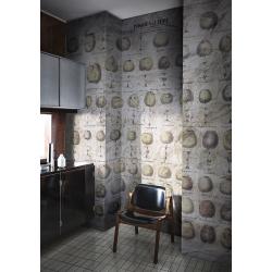 Pommes A Cidre Wall Deco I Decor Mural Vendu Au M2